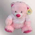 דובי בינוני להדפסה תמונה אישית לפי בחירתכם